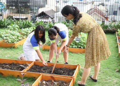 11-Garden (4)