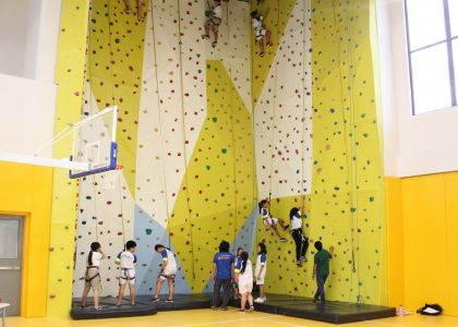 climbing-wall-VP